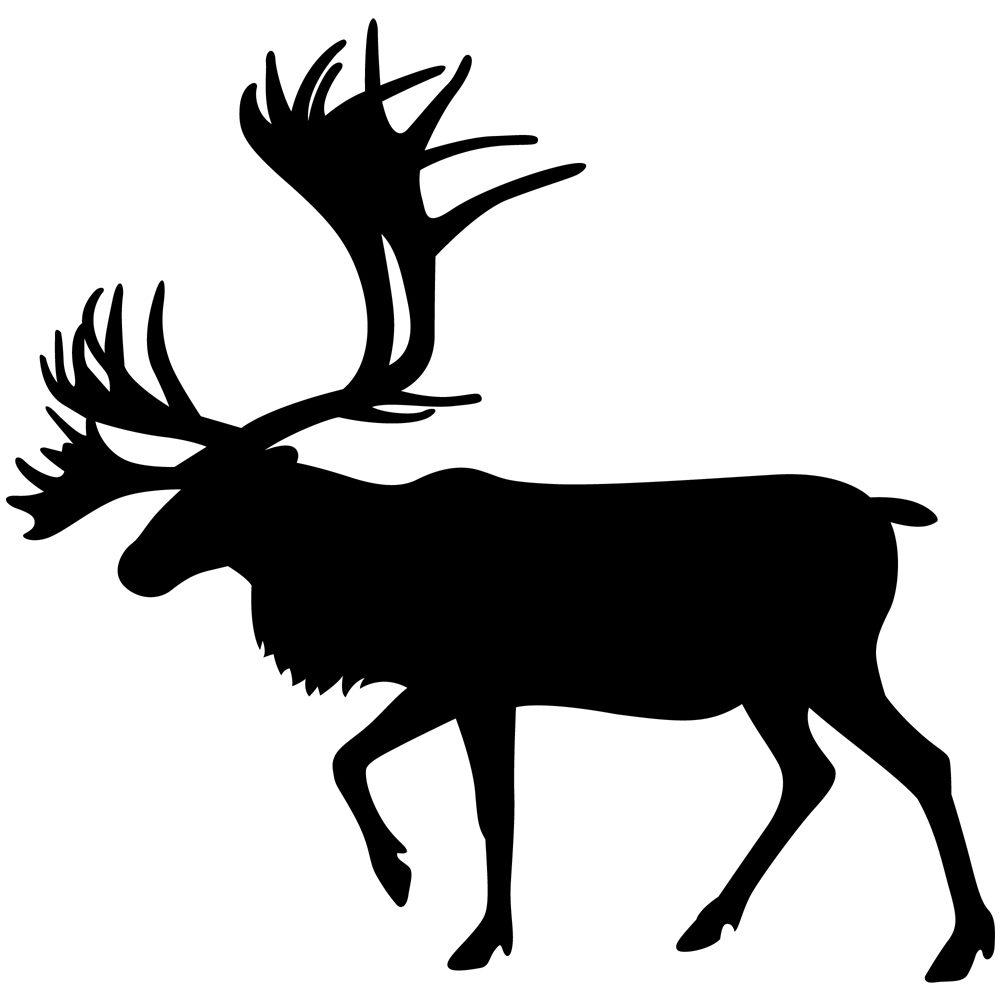 Reindeer's house